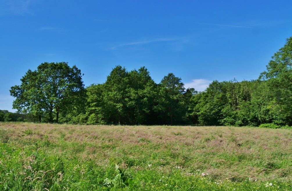 Wohnpark am Teichkamp Lage 02
