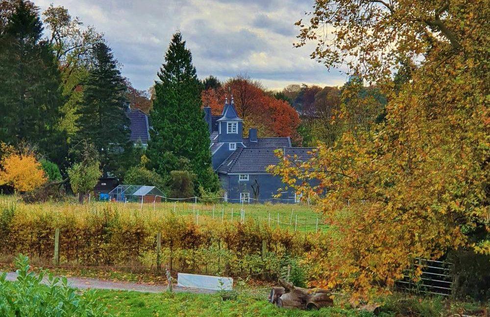 Blick auf Schloss Grünewald